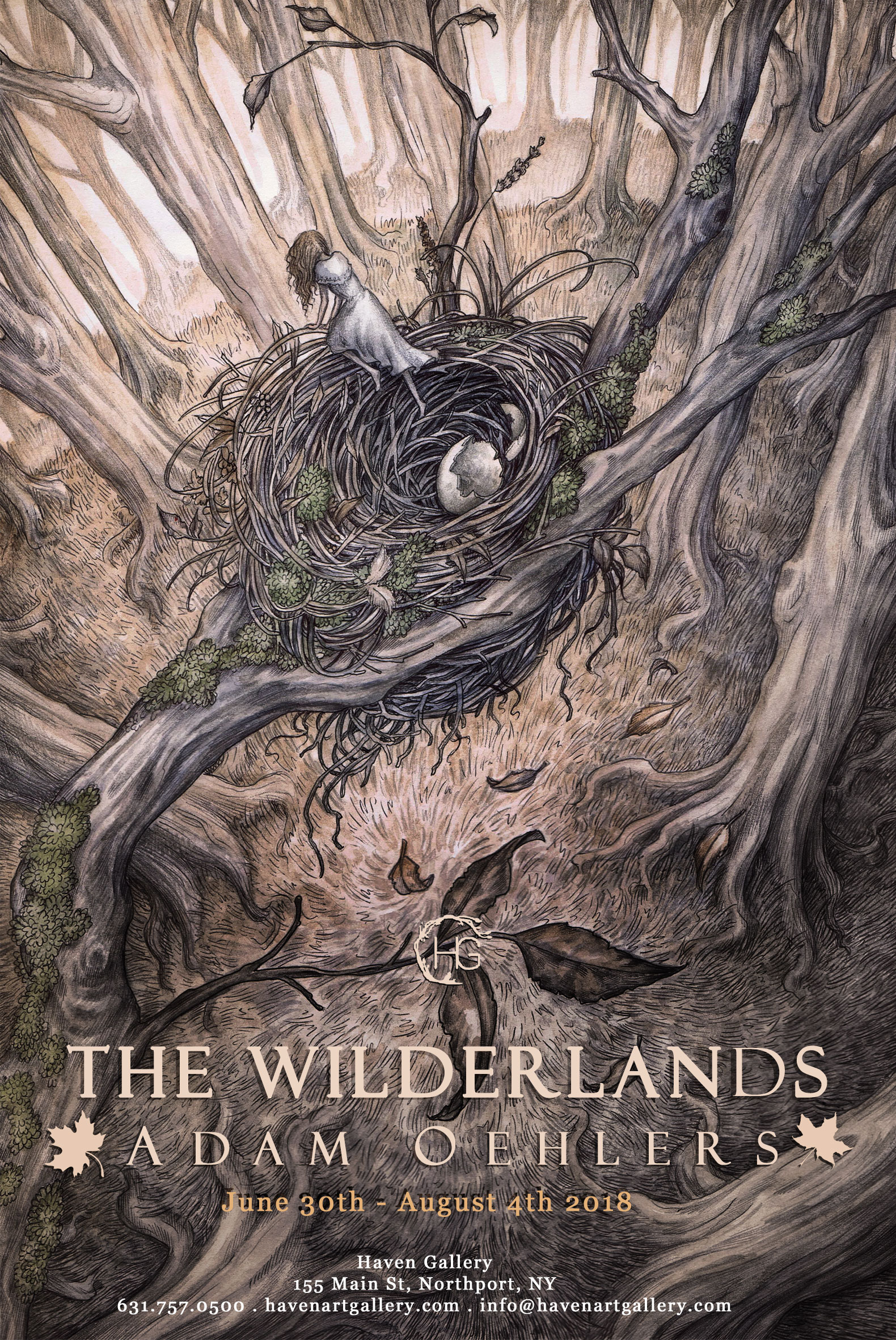'THE WILDERLANDS'